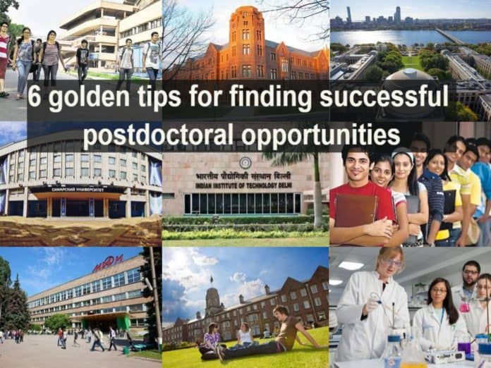 6 golden tips for finding successful postdoctoral opportunities (1)