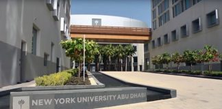 Post-Doctoral Position in NYU - Global: Abu Dhabi