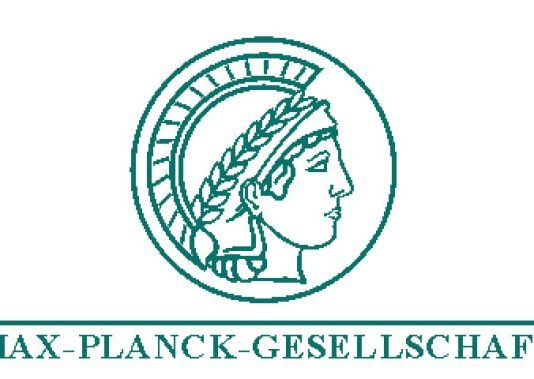 PhD in Germany, International Max Planck Research School