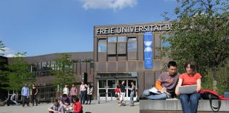 Rising Star Fellowships 2020 for Early-Career Researchers in Germany